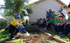 Projeto Plantando o Bem ensina sustentabilidade a mais de 800 estudantes