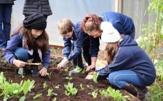 Plantando o Bem 2018 inicia com revitalização de hortas