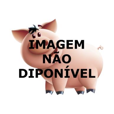 Filezinho